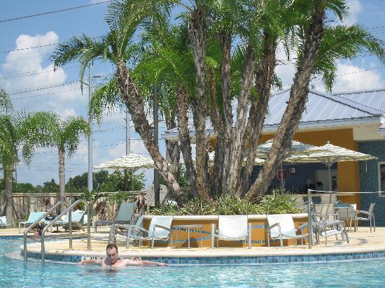 SpringHill Suites Orlando at SeaWorld: pool
