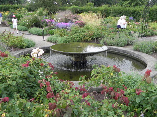 Windsor Day Tours : Wisley Gardens