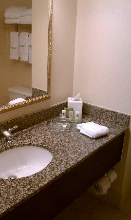 Country Inn & Suites By Carlson, San Diego North: Bathroom sink