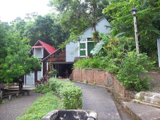 Hacienda Buena Vista : the workhouse