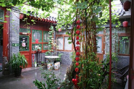 Courtyard View Hotel (Emperors Guards Station HouHai): courtyard with grapes hanging over