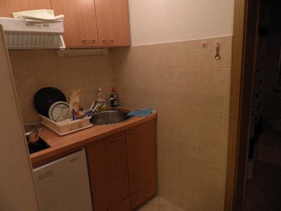 Pension Stankovich: apartamento
