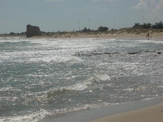 Villaggio Club Torre Rinalda Residenza: la spiaggia