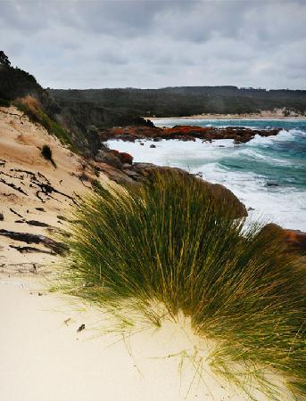 Île King, Australie : Coastal view