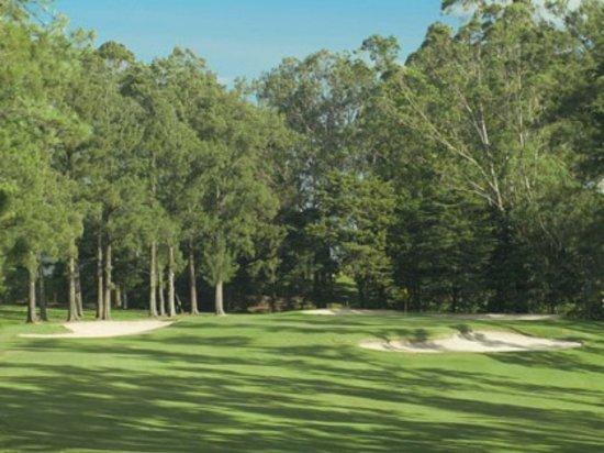 Tee Times Costa Rica Golf Tours: Cariari Country Club