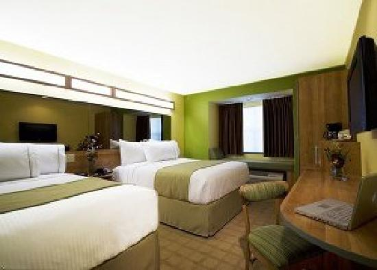 Microtel Inn & Suites by Wyndham Delphos: Double Queen Room