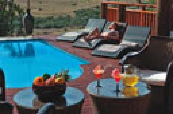Addo Afrique Estate: Soak up the sun by the pool