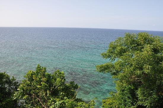 Prospect Plantation: Caribbean view