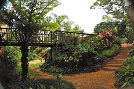 Ridgeview Lodge : Garden