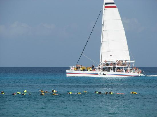 The Money Bar Beach Club: These are the snorkelers on their cruise ship excursion.