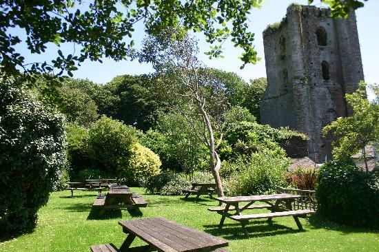 The Tower Inn : garden