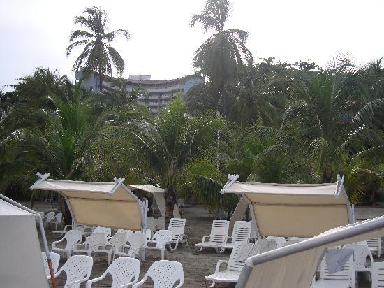 Decameron Galeon: Playa Galeon