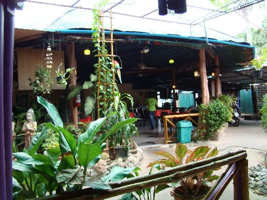 Jolly Frog Backpackers: Jolly Frog Restaurant