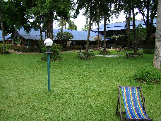 Jolly Frog Backpackers: Jolly Court Yard