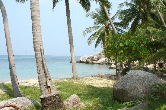 Sai Thong Resort & Spa: beach