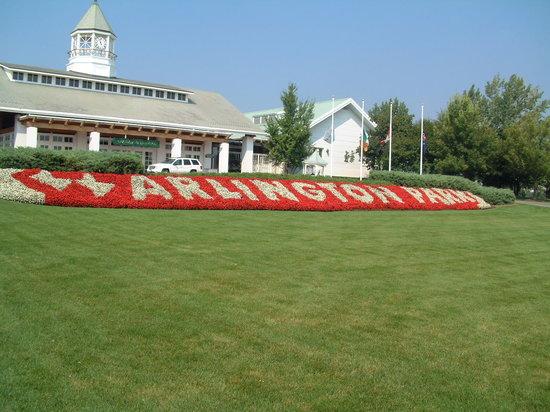 阿灵顿公园赛马场