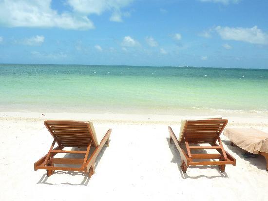 Beloved Playa Mujeres: Day 2 there was no seaweed