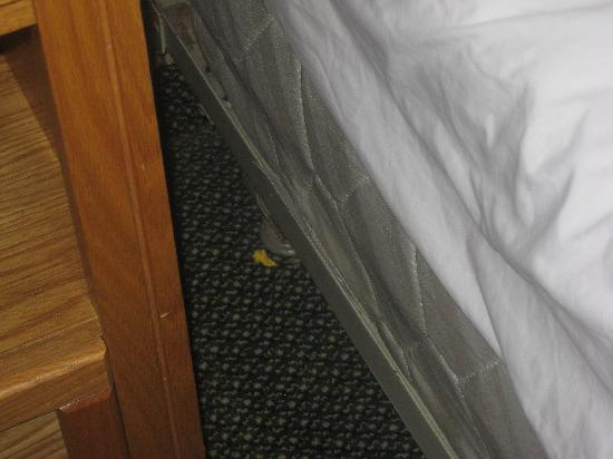 Traverse City MI Travelodge: Popcorn by beds?  Not from me!  Nasty.
