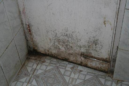 Lucky Guest House : The bathroom door... nasty