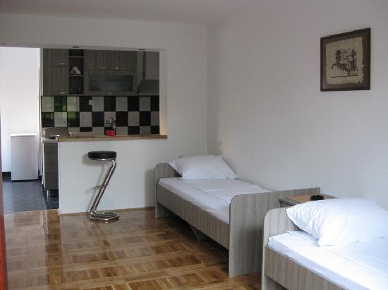 """Accommodation Ristic - Spa of Nis: Apartment """"Silver Pine"""" - Ristic Accommodation"""