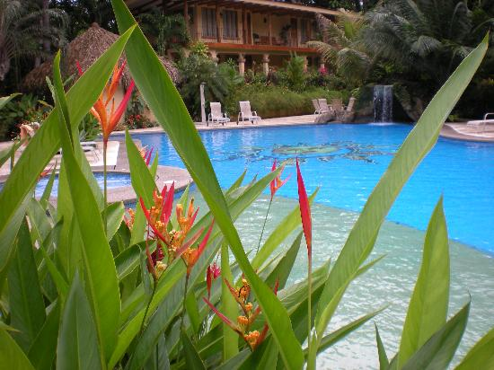 DoceLunas Hotel, Restaurant & Spa: a relaxing day at the pool