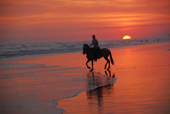 The Riding Adventure: Sunset Tours