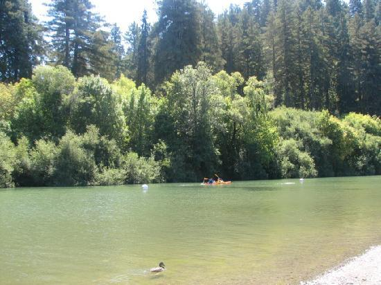 Sonoma County, Californien: The river