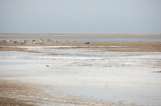Swakopmund, Namibia: Salwüste bei Walfishbay