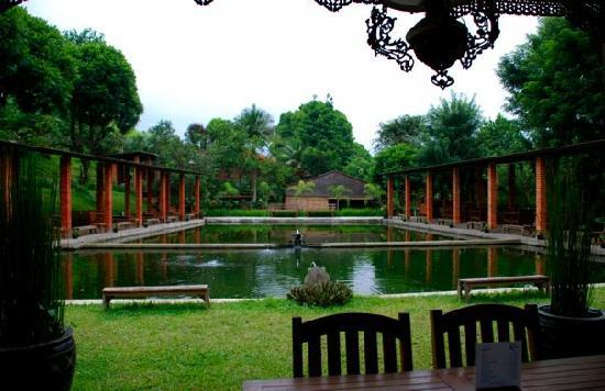 Cipaku Garden Hotel: fishing pond area