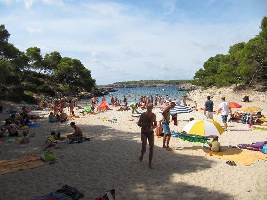 IBEROSTAR Club Cala Barca: Bucht direkt beim Hotel