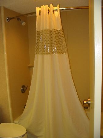 Hampton Inn Charlottesville Bathroom Shower Curtain