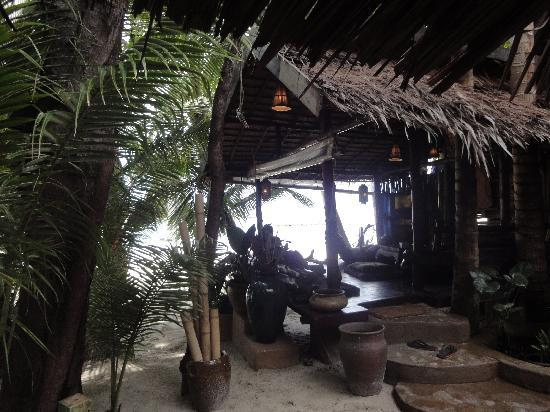 Dolphin Bungalows: my favourite place!