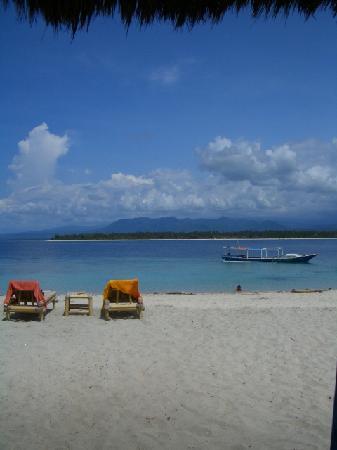 Bungalow manta dive gili air gili air tripadvisor - Manta dive gili air resort ...