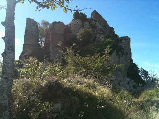 写真Chateau de Roquefixade枚