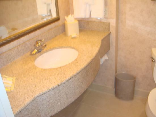 Hilton Garden Inn DFW Airport South: Sink