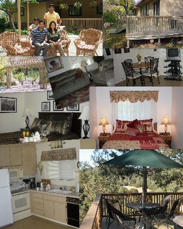 Yosemite Bed and Breakfast: The cottage