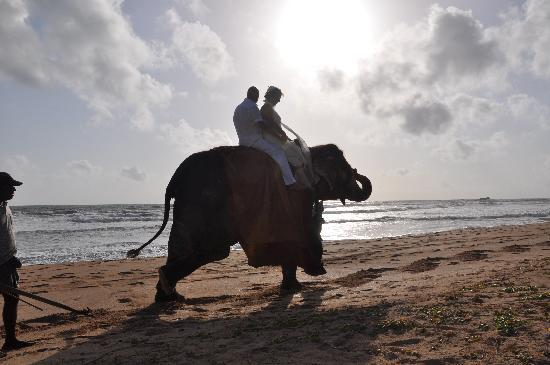 Shangri-Lanka Villa: Beach wedding day