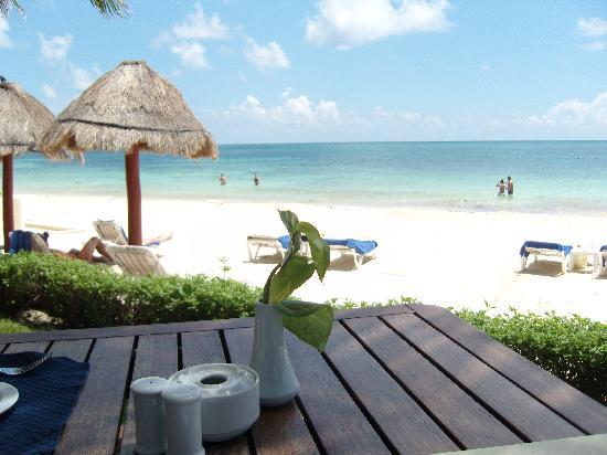 show topic secrets maroma swim rooms playa carmen yucatan peninsula