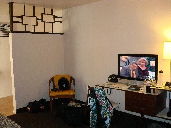 Motel Safari: Great flat screen!