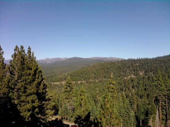 Truckee, CA: The view from my balcony.