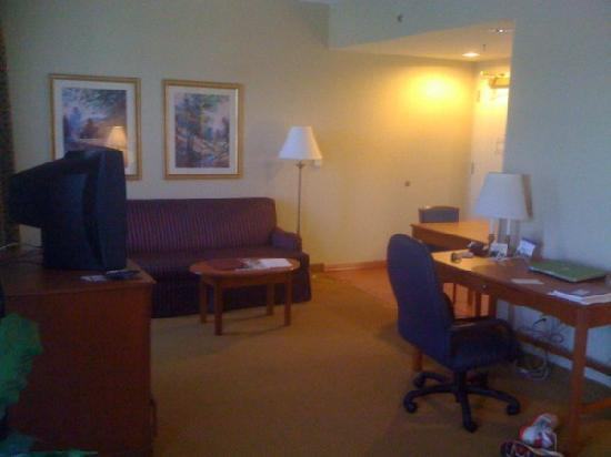 Homewood Suites Harrisburg East-Hershey Area: King Studio Suite