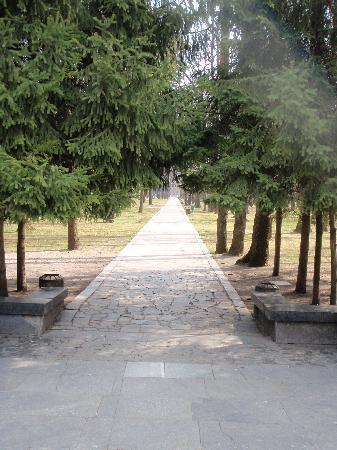 Great War Memorial: memorial