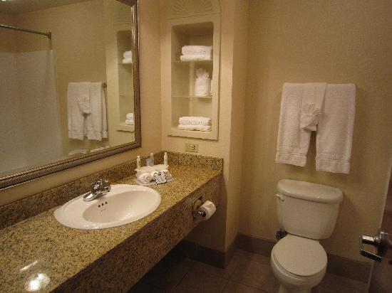Holiday Inn Express Hotel & Suites Urbana-Champaign (U of I Area): Very clean bathroom