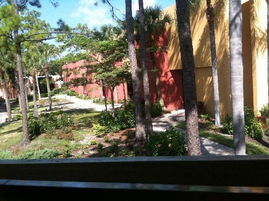 Ramada Orlando Celebration Resort & Convention Center: look at the backyard
