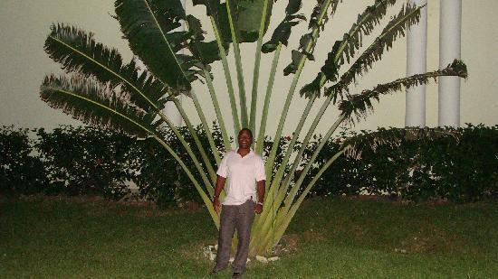 Grand Palladium Jamaica Resort & Spa: je suis trés petit