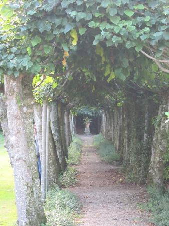 Athelhampton House and Gardens: romantic vista