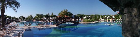 Sherwood Breezes Resort : Poolside