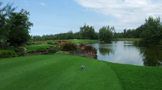 Trou d'eau Douce: 5th tee - 3 wood from Blue tee, aim jst left of bunker to leave a wedge to the shallow green.