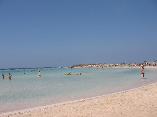Strand von Elafonissi: Elafonissi... il pardiso... 2