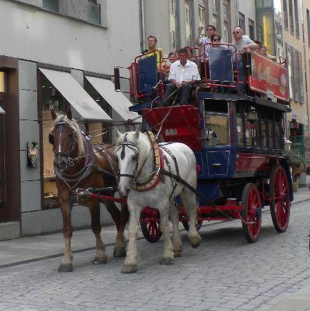 Dresden, Almanya: eine lustige Kutschenfahrt
